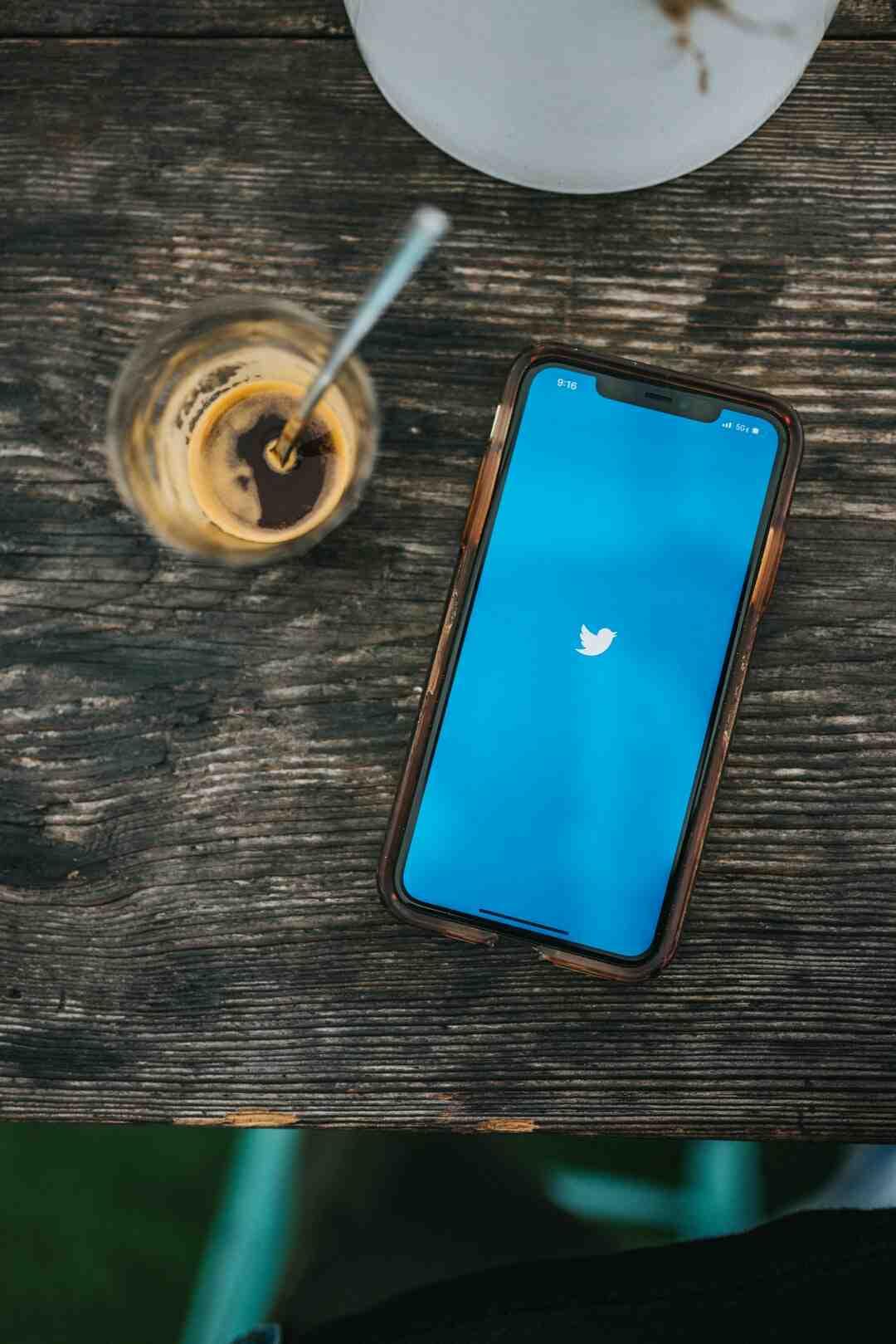 Quelle est le but de l'utilisation de Twitter ?